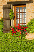Beautiful window in France . — Stock Photo