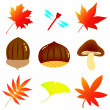 Royalty-Free Stock Vector Image: Autumn material