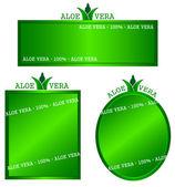 Aloe frame — Stock Vector