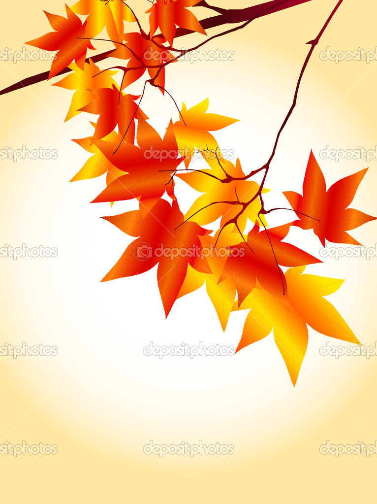 Simple and beautiful backdrop of autumn foliage — Stock Vector #8051281