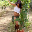 Royalty-Free Stock Photo: Beautiful Woman in VIneyard