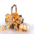 Basket of Mini Pumpkins and Gourds — Stock Photo
