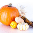 Stock Photo: Mini Pumpkins and Gourds