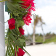 Red Flowers at the Beach — Stock fotografie