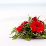 Sahilde kırmızı çiçekler — Stok fotoğraf