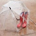 Umbella and Rainboots — Stock Photo