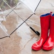 Umbella and Rainboots — Stock Photo #8969537