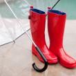 Umbella and Rainboots — Stock Photo #8969564