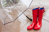 Umbella and Rainboots — Stock Photo