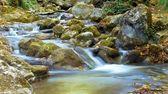 La hermosa agua corriente en el río del bosque — Foto de Stock