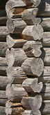 Old wooden wall of the timber — Stock Photo