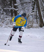 未知のプレーヤーは氷の上 — ストック写真