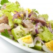 Herring salad, apples and eggs - Stock Photo