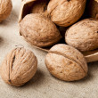 Walnuts — Stock Photo #8619030