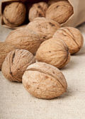 Walnuts — Stockfoto