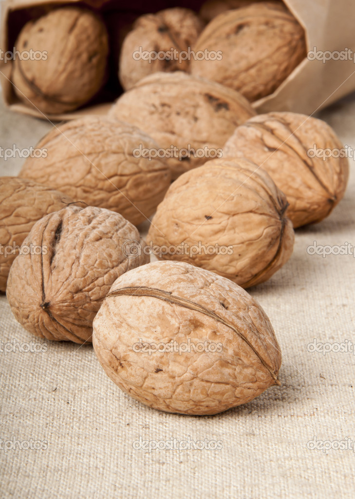 Walnuts — Stock Photo #8619035