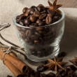 Stock Photo: Coffee grains and spices