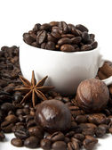 Coffee grains and spices — Stock Photo
