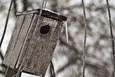 Old small house for birds — Stock Photo
