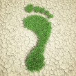 Ecological footprint concept illustration - grass patch footprint — Stok fotoğraf