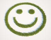 面带笑容的脸形的草修补程序 — 图库照片