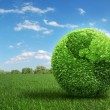 Stock Photo: Leaf covered Earth on green field of grass