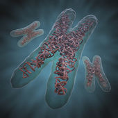 Chromosome X — Stock Photo