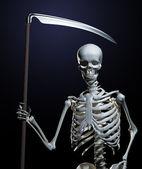 The Grim Reaper — Stock Photo