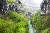 Berglandschap met rivier in montenegro — Stockfoto