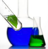 Laboratoriumglaswerk — Stockfoto