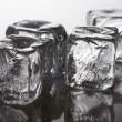 Ice cubes - Photo