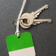 Keys with a label — Stock Photo