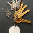 Stock Photo: Key ring and keys