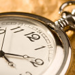 Pocket watch — Stock Photo #8514581