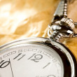 Pocket watch — Stock Photo #8514593