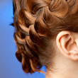 Stock Photo: Modern hairdo with plaits