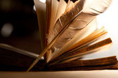 Feather and old open book — Stock Photo