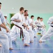 Master karate gives a lesson to his pupils — Stock Photo