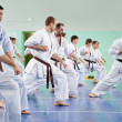 Master karate gives a lesson to his pupils — Stock Photo #9969828