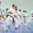 Master karate ger en lektion till hans elever — Stockfoto
