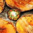 Christmas apple lying in a stacked firewood - Stock Photo