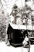 Winter house with icicles in the woods — Stock Photo