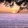 Beautiful winter sunset — Stock Photo #8804616