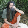 Hippy preparing, rolling and smoking marijuana joint : photos series - Stockfoto