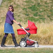 Stock Photo: Mother and pram