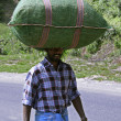 Man carrying bag on head, india — Stock Photo