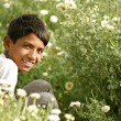 Young rajasthani boy plucking flowers in daisy fields, pushkar, india — Stock Photo