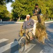 Stock Photo: Two men transporting grass using rickshaw bicycle