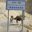 Sea level sign on the road leading to the dead sea region - Foto Stock