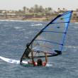 Windsurfer, red sea beach resort, sinai, egypt — Stock Photo